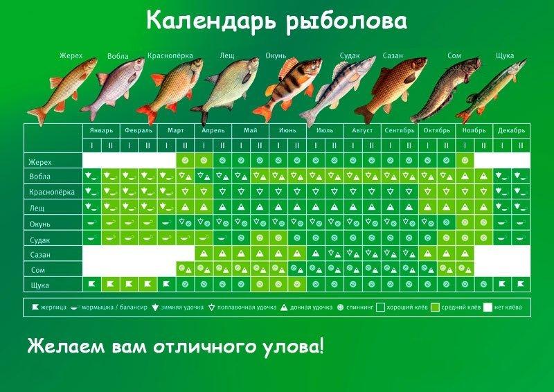 Календарь клева рыбы на 2018 год по дням